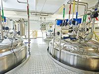 Pharmaceutical manufacture